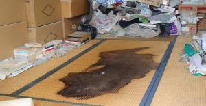 汚染された畳